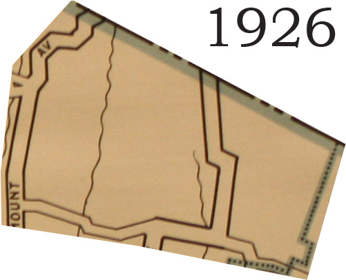 1926 Masonicus Crop
